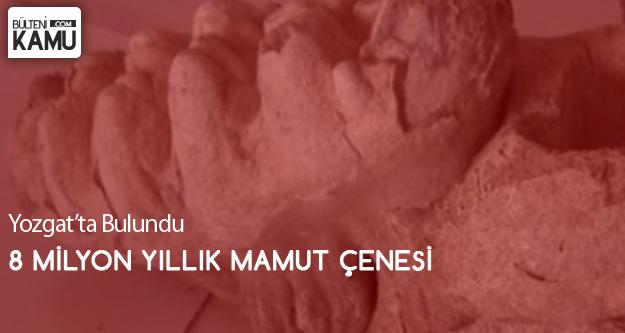 Yozgat'ta 8 Milyonluk 'Mamut' KalıntısıBulundu