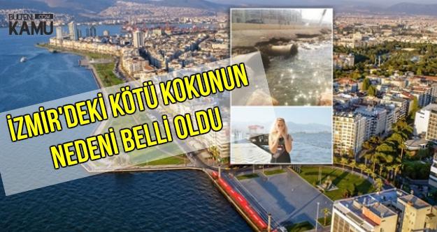 İzmir'deki Kötü Kokunun Nedeni Belli Oldu