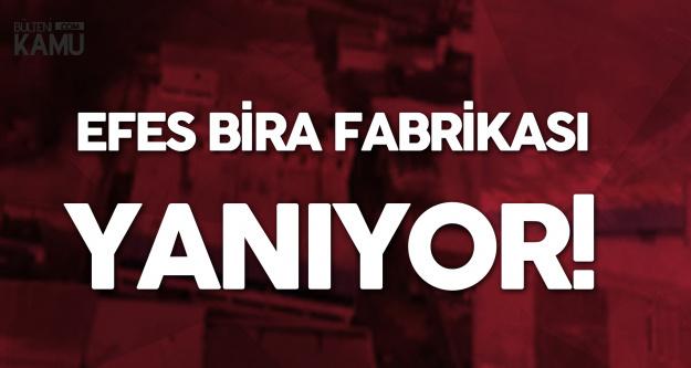 İstanbul Güngören'deki Alkollü İçecek Fabrikası Yanıyor