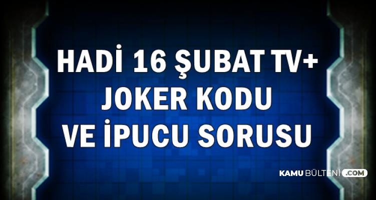 Hadi 16 Şubat tv+ Joker Kodu ve İpucu Sorusu: Büyük Kedilerin En Büyüğü Hangisi?