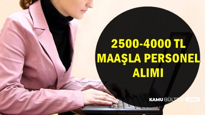 KPSS Şartı Yok: 4 Kurum 2500-4000 TL Maaşla Personel Alımı