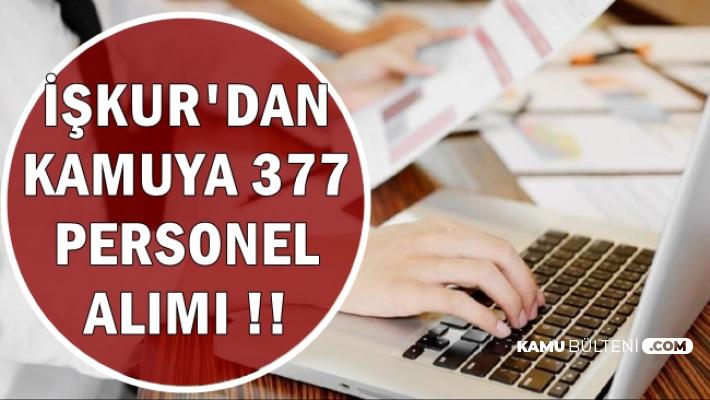 İŞKUR'dan Kamuya 377 Personel Alımı (MEB, EGM, Belediye)