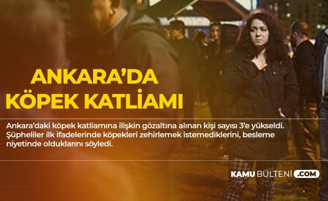 Ankara Batıkent'teki Köpek Katliamıyla İlgili Yeni Gelişme! Gözaltı Sayısı 3'e yükselti
