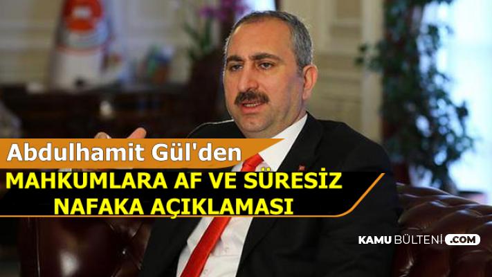 Abdulhamit Gül'den Mahkumlara Af ve Süresiz Nafaka Açıklaması