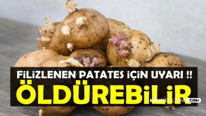 Filizlenen Patatesin Zararları Açıklandı: Öldürebilir