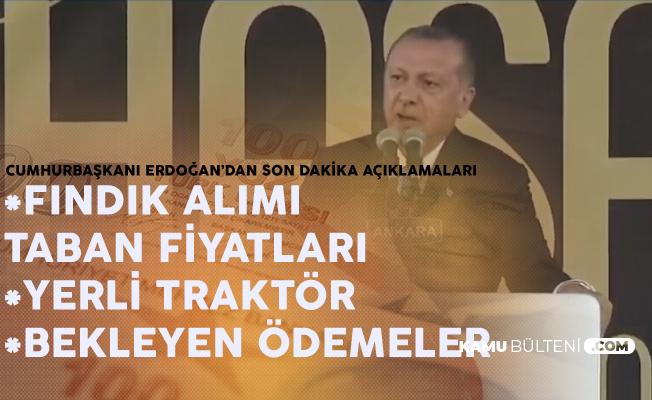 Cumhurbaşkanı Erdoğan: Fındık Alımı Fiyatları Netleşti, TMO Fındık Alımı Yapmaya Başlıyor!