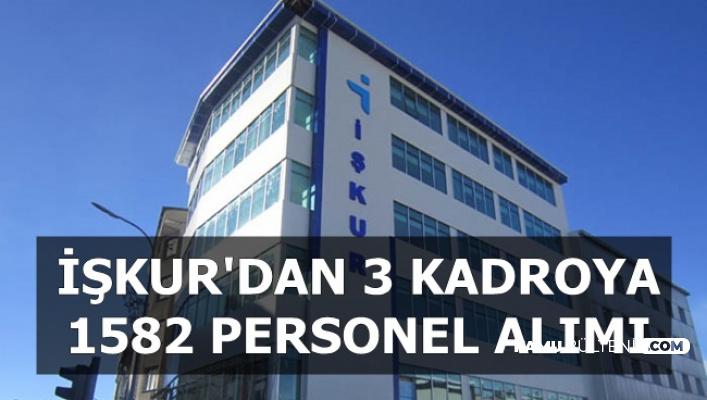 İşkur'dan 3 Kadroya 1582 Personel Alımı