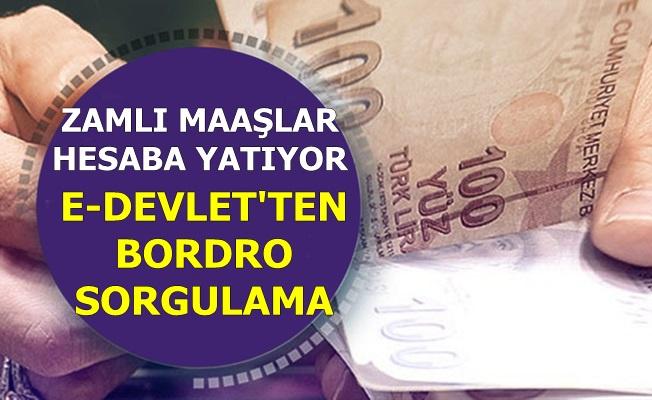 Memurların Zamlı Maaşları Hesaba Yatıyor-İşte E-Devlet'ten E-Bordro Sorgulama (Turkiye.gov.tr)