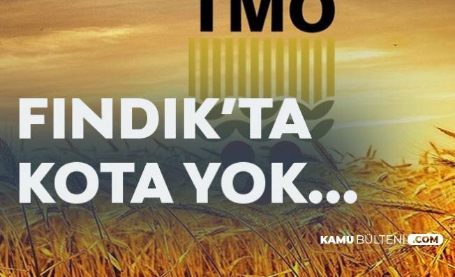 TMO'dan Kota Açıklaması Geldi!'Fındık Alımında Kota Uygulanmıyor'