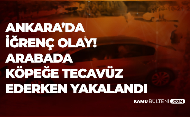Ankara 'da İğrenç Olay! Köpeğe Arabada Cinsel İstismarda Bulunurken Yakalandı
