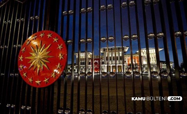 Şeyda Nur Karaoğlu Cumhurbaşkanı Danışmanı Oldu (Kimdir?)
