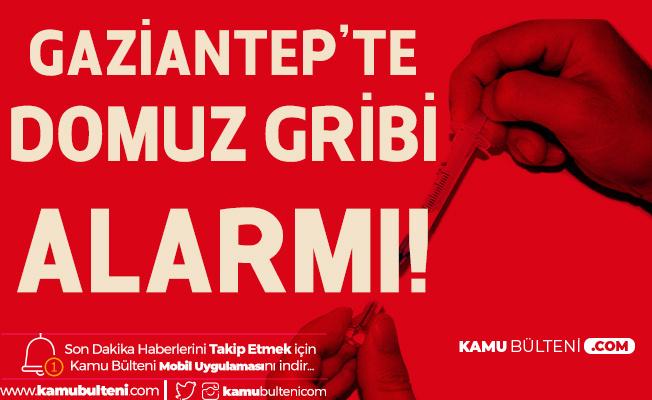 Gaziantep'te Domuz Gribi Alarmı! Herkes Bir Anda Maske Takmaya Başladı...