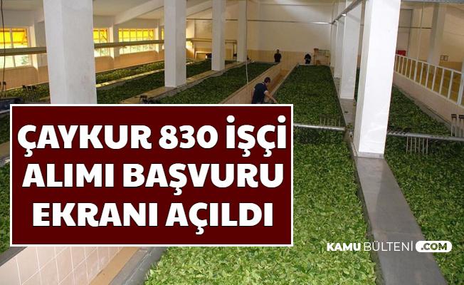 Çaykur Kura ile 830 İşçi Alımı Başvuru Ekranı Açıldı