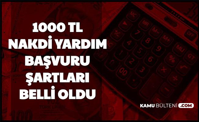 1000 TL Pandemi Destek Başvuru Şartları Belli Oldu (Turkiye.gov.tr Başvurusu ve E Devlet Şifresi Alma)