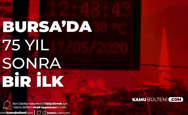 Bursa'da 75 Yıl Sonra Bir İlk! Afrika Sıcakları Kavurdu...