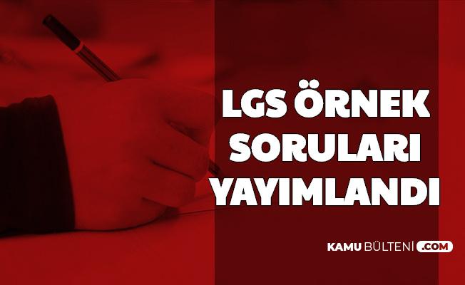 LGS Mayıs Ayı 2. Örnek Soruları Yayımlandı