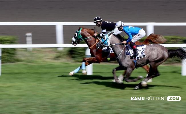 Son Dakika... At Yarışları 12 Haziran'da Başlayacak mı?
