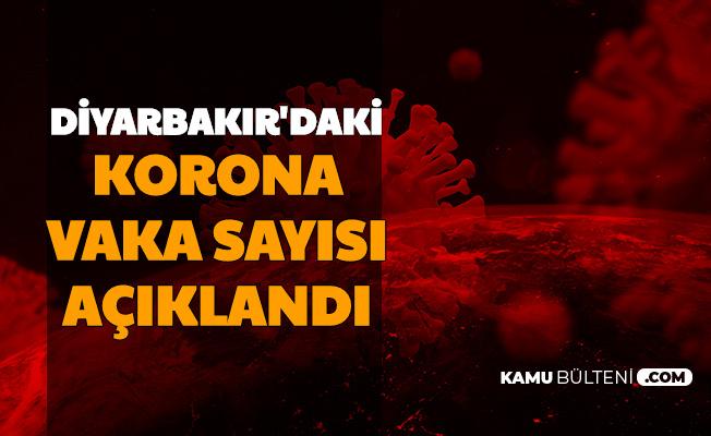 Diyarbakır'daki Vaka Sayısı ve Hayatını Kaybedenlerin Yaş Ortalaması Açıklandı