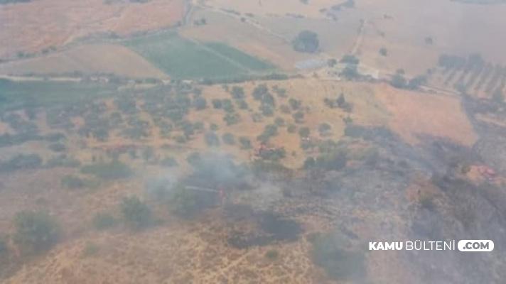 Hatay İskenderun'da Orman Yangını Çıktı: Çok Sayıda Ekip Bölgeye Sevk Edildi