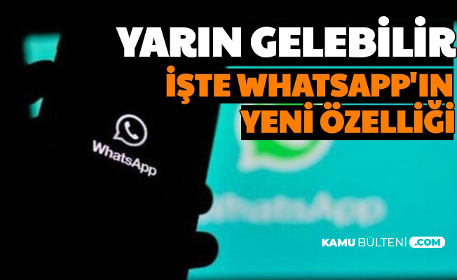 WhatsApp'a Yeni Özellik Geliyor... WhatsApp Web'te Artık...