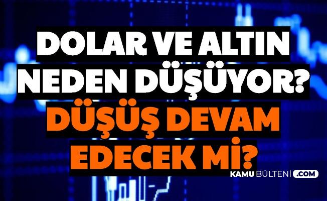 Dolar, Euro ve Gram-Çeyrek Altında Düşüş Sürüyor (Neden Düşüyor? Düşecek mi Çıkacak mı?)