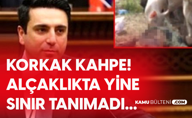 Ermeni Siyasetçiden Kahpece Paylaşım! Azerbaycan Şehitlerin Naaşını Domuzlara Yedirdiler