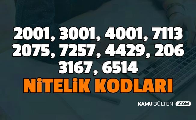 2001, 3001, 4001, 7113 , 2075, 7257, 4429, 2061, 3167, 6514 Nitelik Kodları Nedir? İşte Anlamı