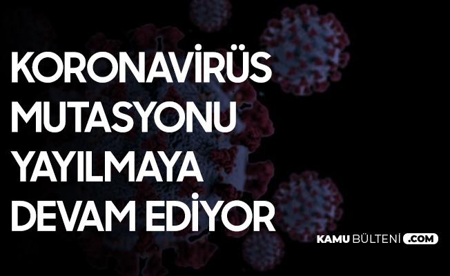 Koronavirüs Mutasyonu Filipinler'e de Sıçradı