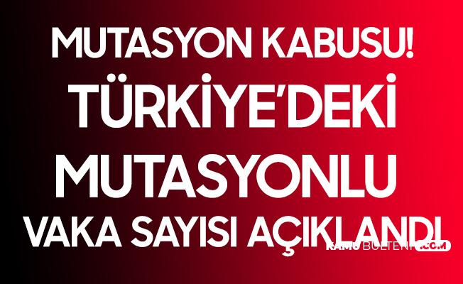 Son Dakika! Türkiye'deki Mutasyon Vakası 196'ya Yükseldi