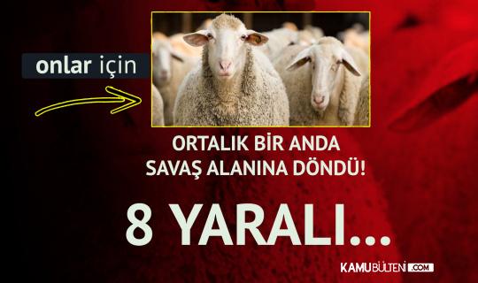 Şanlıurfa'da Koyun Otlatma Kavgası! Ortalık Savaş Alanına Döndü: 8 Yaralı