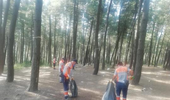 Maltepe'de yangınlara karşı orman temizliği
