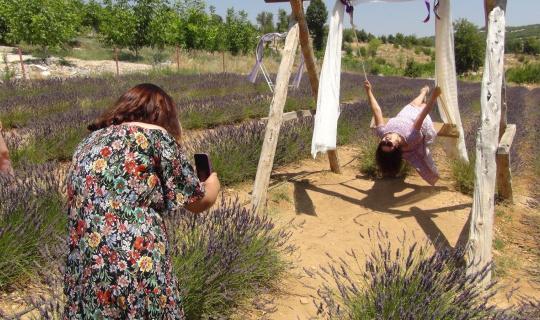 Mersin'in ilk lavanta bahçesi yoğun ilgi görüyor