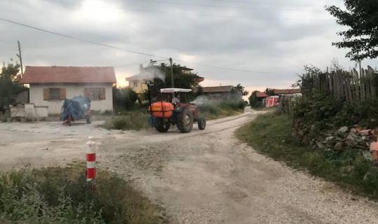 Muhtar köyü sineklere karşı ilaçlıyor