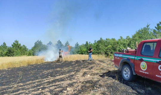 Ses bombasından çıkan alevler tarım arazisini küle çevirdi