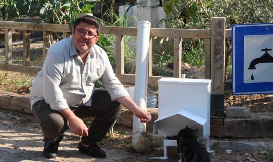 Başkan Kökten'den sokak hayvanları için örnek proje