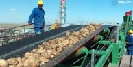 Özelleştirilen Şeker Fabrikası İşçileri Mağdur Edildi
