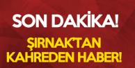 Son Dakika: Şırnak'tan Kahreden Haber Geldi! Şehit ve Yaralı Askerlerimiz Var