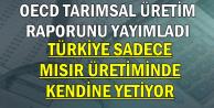 OECD Rapor Yayımladı: Türkiye Tarımda Sadece 1 Üründe Kendine Yetiyor