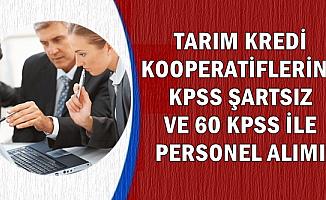 Tarım Kredi'den 2 Yeni İlan: KPSS'siz ve 60 KPSS ile 98 Kamu Personeli Alımı