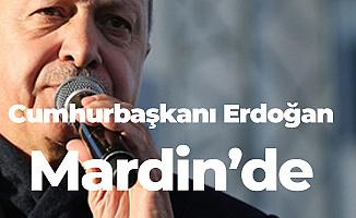 Cumhurbaşkanı Erdoğan Mardin'de Konuştu: İlan Ediyoruz...