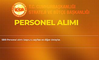 Cumhurbaşkanlığı Strateji ve Bütçe Başkanlığı'na Sözleşmeli Personel Alımı Yapılacak - Başvuru Sayfası