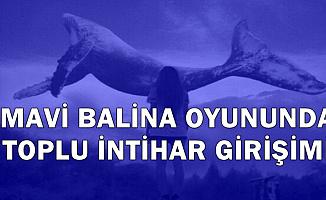 Mavi Balina Oyununda 7 Ortaokul Öğrencisi İntihar Kararı Aldı (Oyun Nedir?)