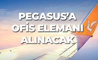 Pegasus Ofiste Çalışacak Destek Elemanı Alımı Yapacak