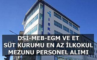 İŞKUR Kamu İlanları: DSİ-MEB-EGM-ESK Memur Personel Alıyor