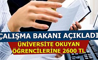 Başvuru Ekranı Açıldı-Üniversite Öğrencilerine Türkiye İş Kurumu'ndan İş