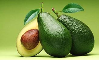 Defnegillerden Amerikan Armudu Olarak Bilinen Meyvenin Adı Nedir? KPSS Sorusunun Cevabı