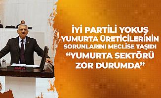 Fahrettin Yokuş , Yumurta Üreticiler Birliğinin Sorunlarını TBMM'ye Taşıdı