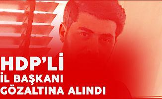 HDP Muş İl Başkanı Gözaltına Alındı