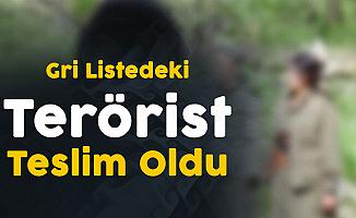 İçişleri Bakanlığı'ndan Açıklama! 300 Bin TL Ödülle Aranan Terörist Teslim Oldu