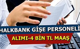 4 Bin TL Maaşla Halkbank Gişe Personeli Alımı Yapıyor-KPSS Şartsız